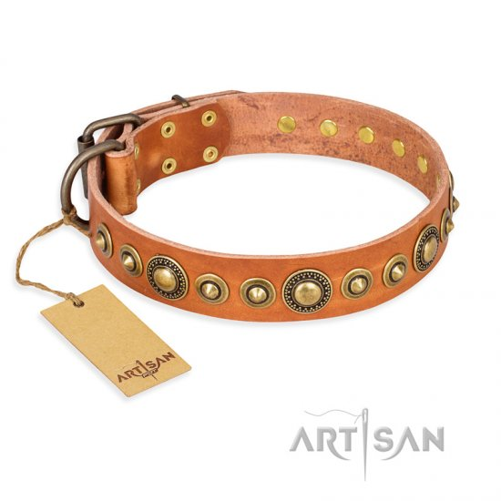 """Feast of Luxury"" FDT Artisan Tan Leather dog Collar with Old Bronze Look Circles"