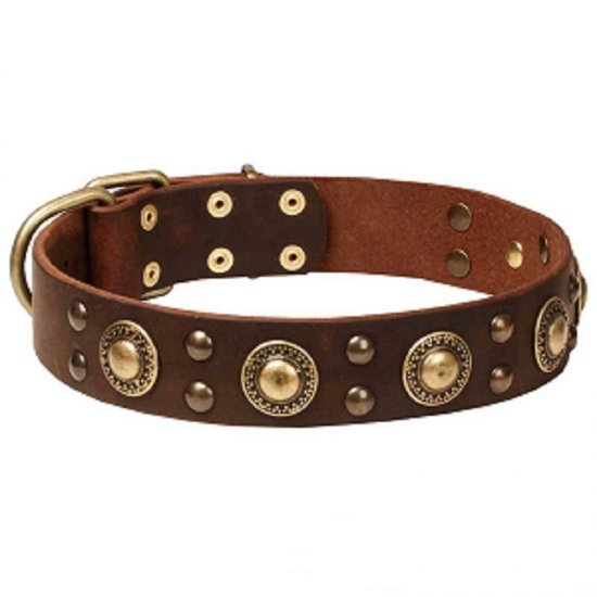 """Space-like"" Leather Dog Collar with Brass Circles - 1 1/2 inch (40 mm) wide"