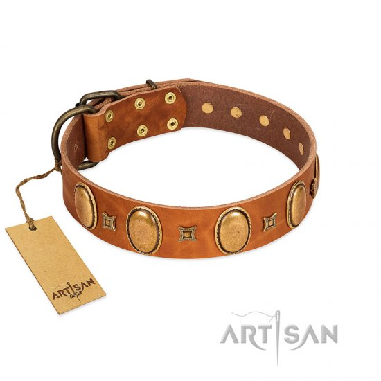 """Glossy Autumn"" Designer Handmade FDT Artisan Tan Leather dog Collar with Ovals and Studs"