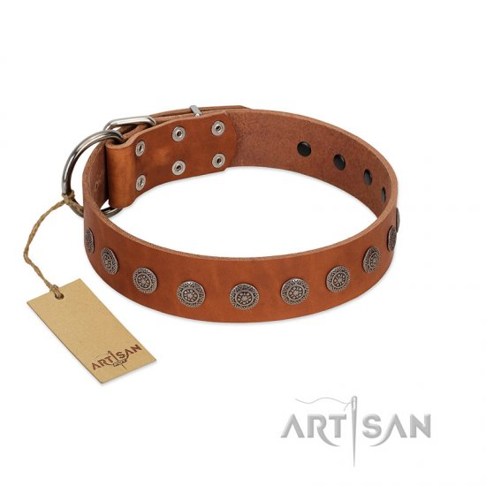 """Lucky Star"" Handmade FDT Artisan Designer Tan Leather dog Collar with Round Plates"