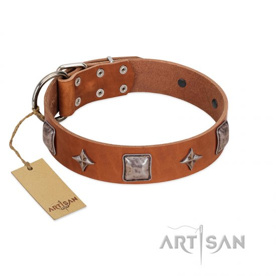 """Lucky Star"" FDT Artisan Tan Leather dog Collar with Silver-Like Embellishments"