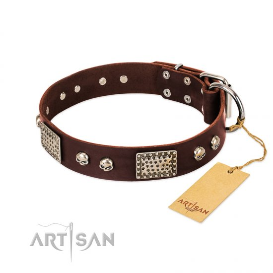 """Pirate Skull"" FDT Artisan Brown Leather dog Collar with Old Silver Look Plates and Skulls"
