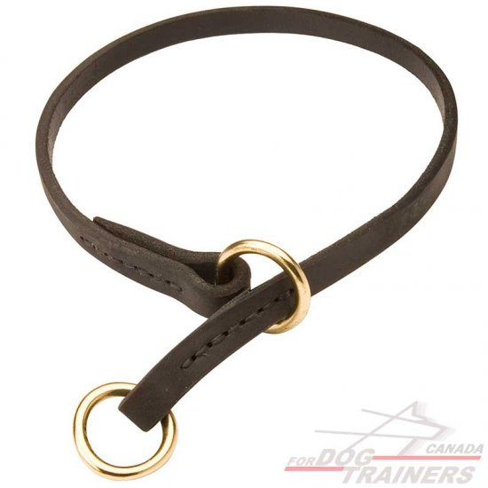 Unusual Leather Dog Collar For Training