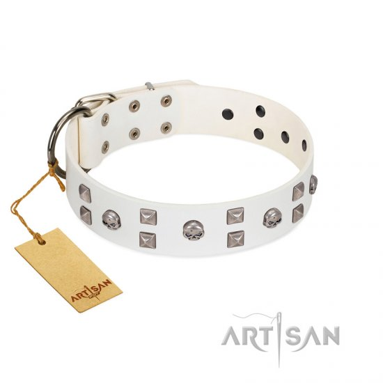 """Rock the Sky"" Durable FDT Artisan White Leather dog Collar with Chrome-plated Decorations"