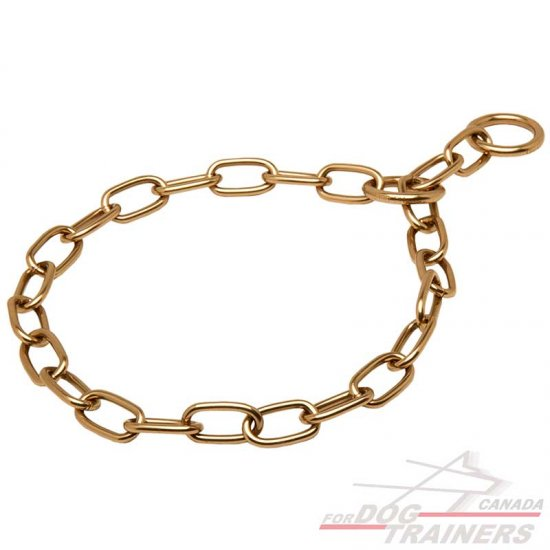 Prong Collar For Dog Where To Buy