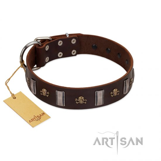 """War Chief"" FDT Artisan Genuine Brown Leather dog Collar with Skulls and Plates"