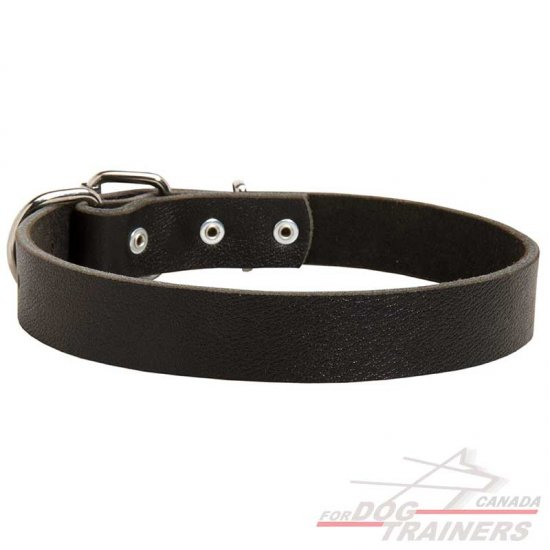 Elegant Smooth Leather Dog Collar for Medium and Large Breeds