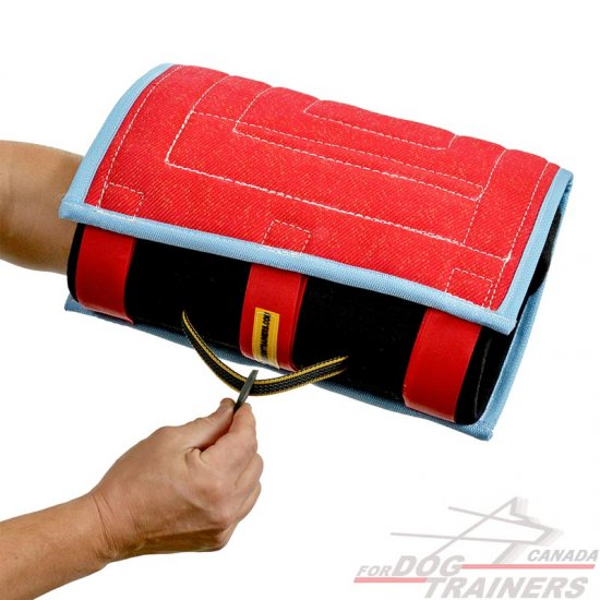 Bite developer for young and adult dogs