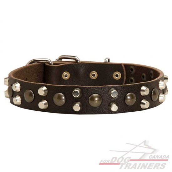 Elegant Leather Dog Collar with Studs and Pyramids