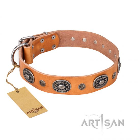 """Twinkle Twinkle"" FDT Artisan Incredible Studded Tan Leather dog Collar"