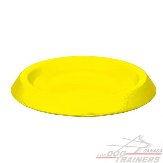 Flying Dog Disk for Training and Having Fun - 9 Inch (22 cm)