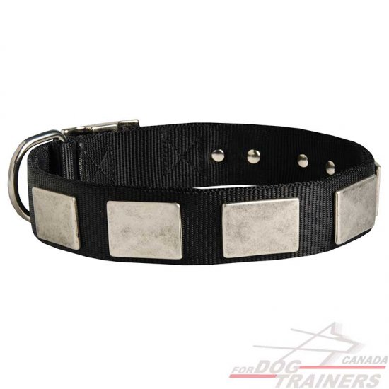 Fashion Nylon Dog Collar with Vintage Plates for Daily Walking