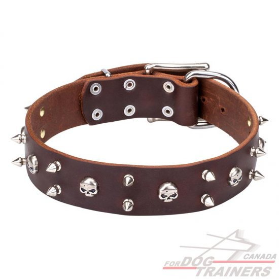 "Leather Dog Collar Decorated with Skulls and Spikes ""Blackbeard """
