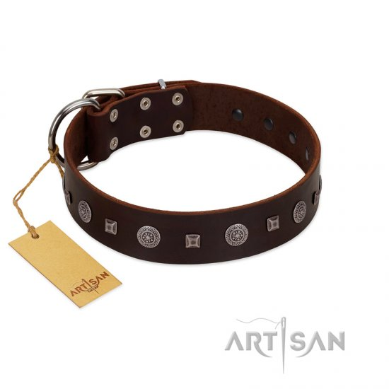 """Pure Sensation"" Exclusive FDT Artisan Brown Leather dog Collar with Fancy Brooches and Studs"