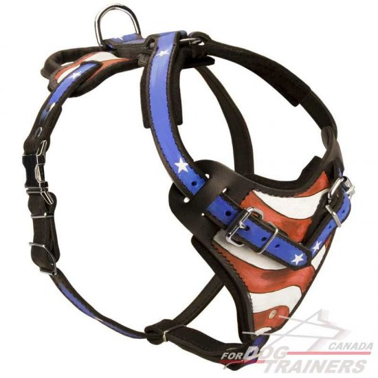 Fashion Walking Leather Dog Harness with Handle