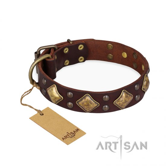 """Golden Square"" FDT Artisan Brown Leather dog Collar with Large Squares"