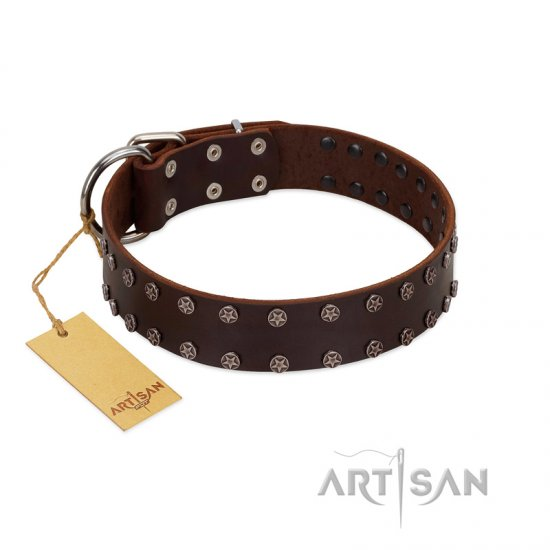 """Star Party"" Handmade FDT Artisan Brown Leather dog Collar with Silver-Like Studs"