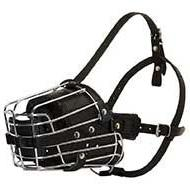 Wire Cage Dog Muzzle with Overall Padding