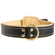 Walking and Training Nappa Leather Dog Collar