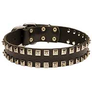 Leather Dog Collar Decorated With Nickel Pyramids