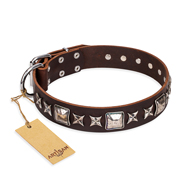 """Perfect Impression"" FDT Artisan Brown Leather Dog Collar with Silver-Like Studs - 1 1/2 inch (40 mm) Wide"