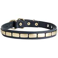 Fashion Leather Dog Collar With Shiny Plates