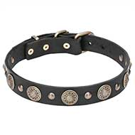"Leather Dog Collar ""Magic Necklace"" with Brass Circles and Studs - 1 1/5 inch (30 mm)"