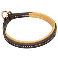 Padded Leather Dog Collar For Training And Walking