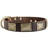 New War Leather Dog Collar with Hammered Brass Plates