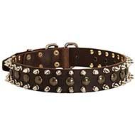 Studded and Spiked Leather Dog Collar for Showy Promenades