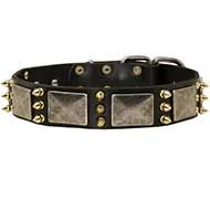 Unique Leather Dog Collar with Plates and Spikes