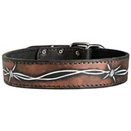 Fashion Handpainted Leather Dog Collar for Walking and Training
