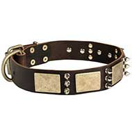 Designer Leather Dog Collar with Spikes and Plates