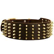 Designer Extra Wide Spiked Leather Dog Collar for Stylish Walks