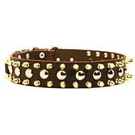 Classy Leather Dog Collar with Silverish Studs and Goldish Spikes