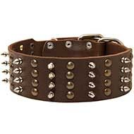 Spiked and Studded Leather Canine Collar for Walking