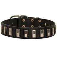Leather Dog Collar Embellished with Vertical Nicklel Plates