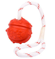 Cool Training Toy - Quality Red Ball on String