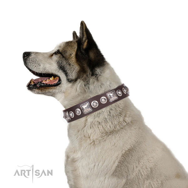 Exquisite adorned leather dog collar for daily walking