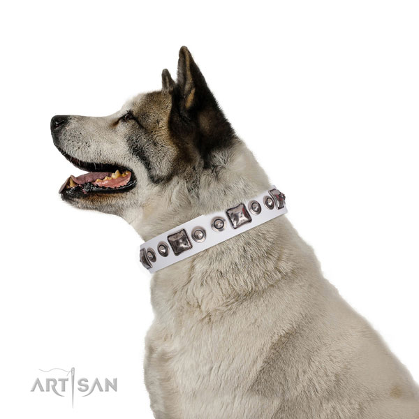 Inimitable decorated natural leather dog collar for fancy walking