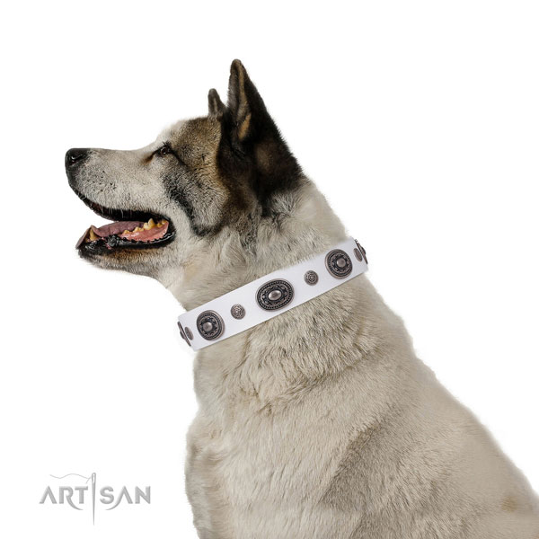 Genuine leather dog collar with reliable buckle and D-ring for daily walking