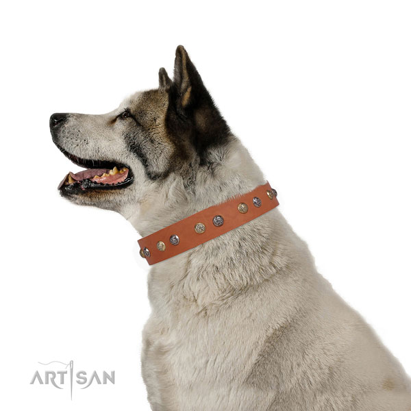 Leather dog collar with strong buckle and D-ring for daily walking