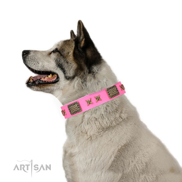 Designer adornments on basic training natural genuine leather dog collar