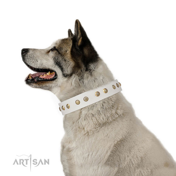 Exquisite studs on handy use full grain genuine leather dog collar