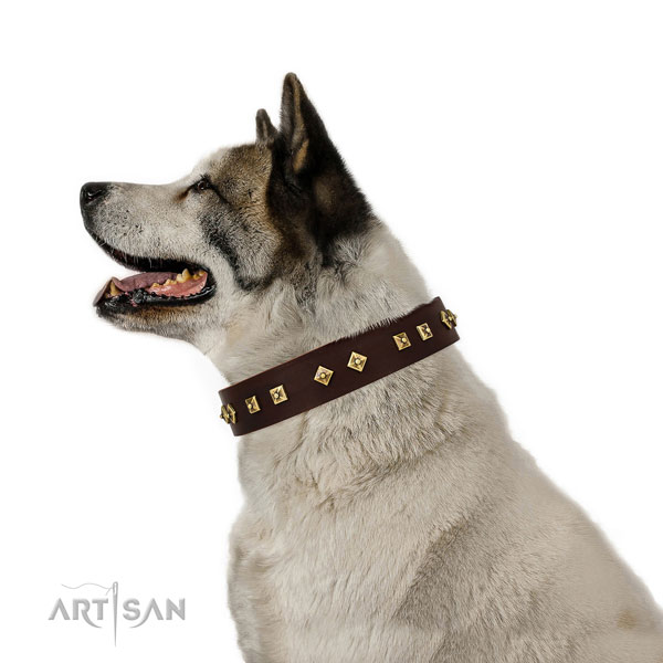 Top notch studs on easy wearing full grain genuine leather dog collar