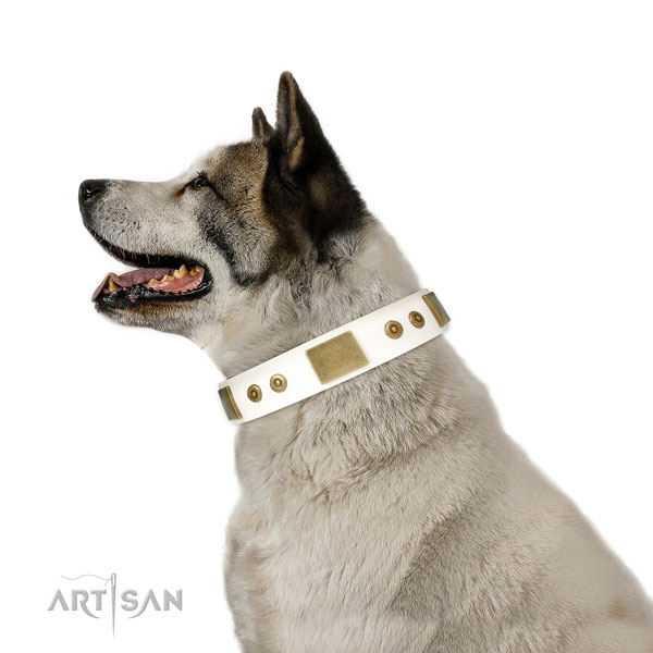Best quality handy use dog collar of natural leather