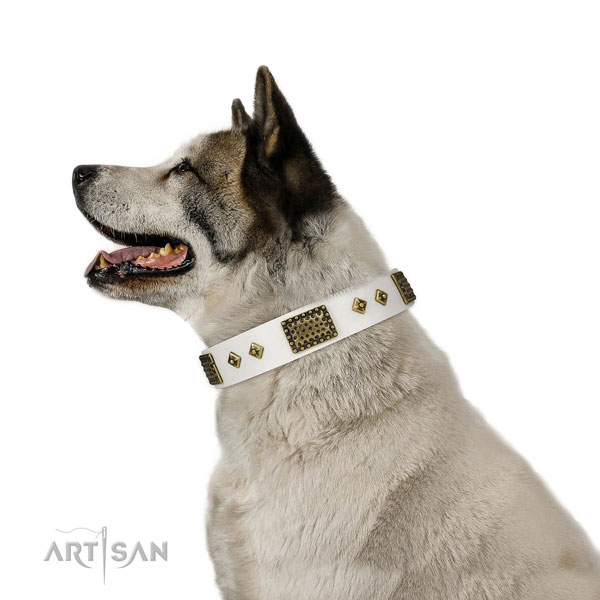 Walking dog collar of natural leather with fashionable decorations