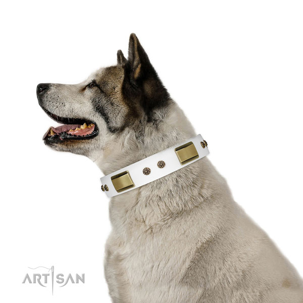 Daily use dog collar of natural leather with exquisite decorations