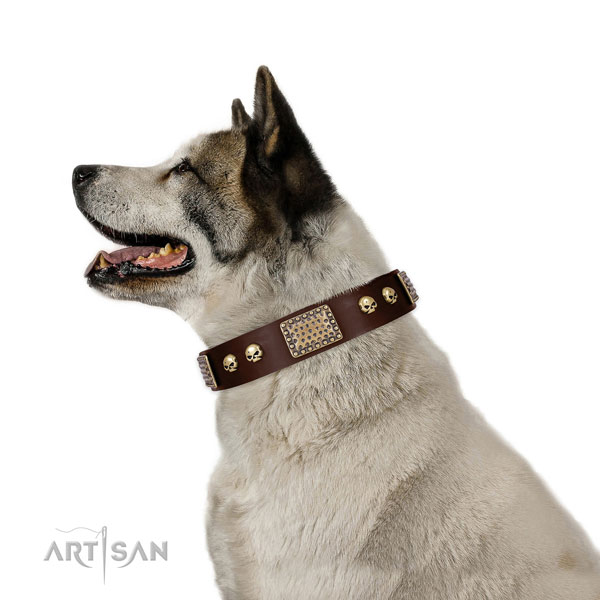 Rust-proof D-ring on genuine leather dog collar for fancy walking