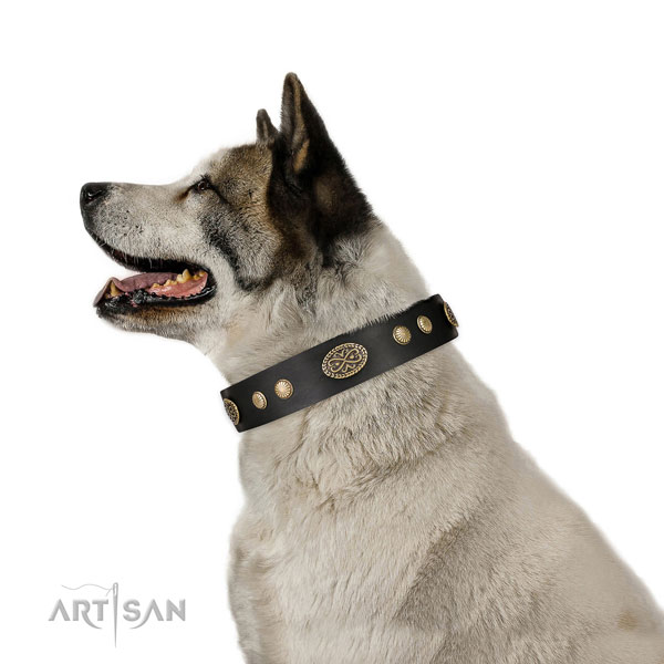 Rust resistant D-ring on natural leather dog collar for daily walking